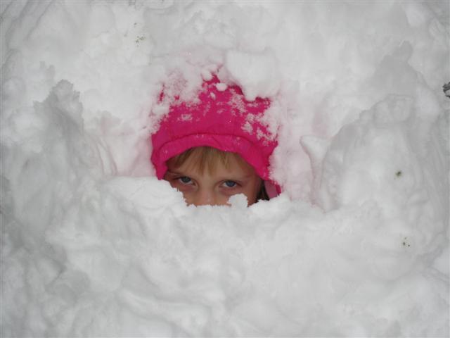 Christmas 2008 030 (Small)