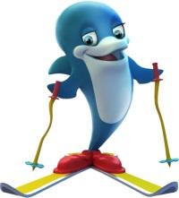 2014 Dolphin
