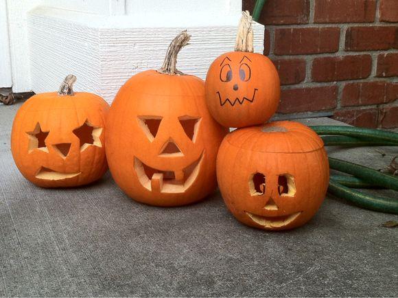 All Pumpkins All The Time - Pumpkin Carving