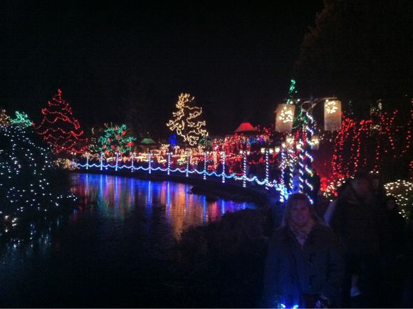 Advent Calendar Day #21 - Festival of Lights at VanDusen Gardens