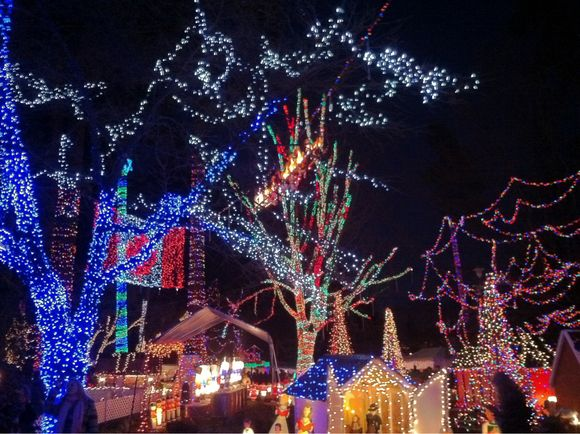 Advent Calendar Day #20 - Bright Nights at Stanley Park