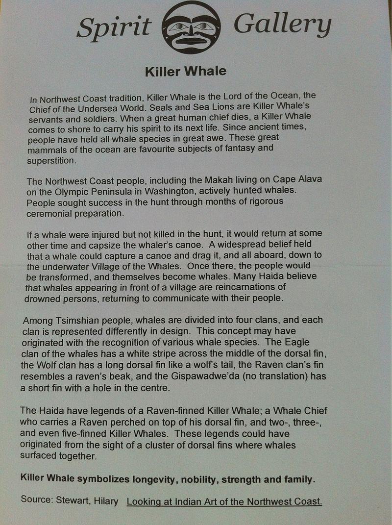 Killer Whale by Cody Mathias